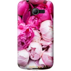 Чехол на Samsung Galaxy Star Plus S7262 Розовые цветы