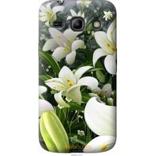 Чехол на Samsung Galaxy Core Plus G3500 Лилии белые
