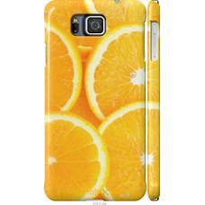 Чехол на Samsung Galaxy Alpha G850F Апельсинки