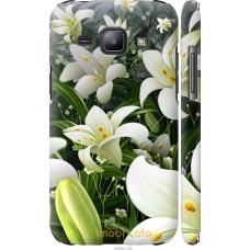Чехол на Samsung Galaxy J1 J100H Лилии белые