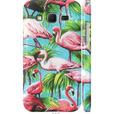 Чехол на Samsung Galaxy Core Prime G360H Tropical background