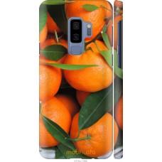 Чехол на Samsung Galaxy S9 Plus Мандарины