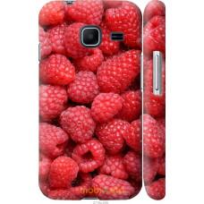 Чехол на Samsung Galaxy J1 Mini J105H Малина