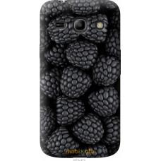 Чехол на Samsung Galaxy Star Advance G350E Черная ежевика