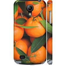 Чехол на Samsung Galaxy S4 mini Мандарины