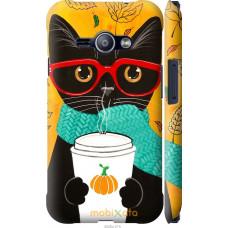 Чехол на Samsung Galaxy J1 Ace J110H Осенний кот