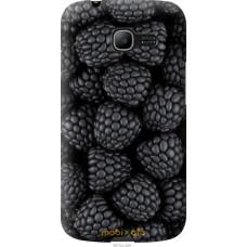 Чехол на Samsung Galaxy Star Plus S7262 Черная ежевика