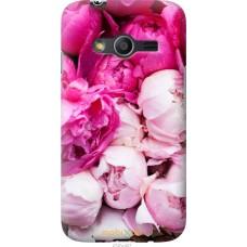 Чехол на Samsung Galaxy Ace 4 G313 Розовые цветы