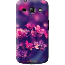 Чехол на Samsung Galaxy Star Advance G350E Весенние цветочки