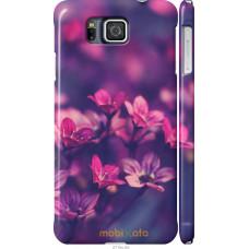 Чехол на Samsung Galaxy Alpha G850F Весенние цветочки