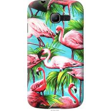 Чехол на Samsung Galaxy Star Plus S7262 Tropical background