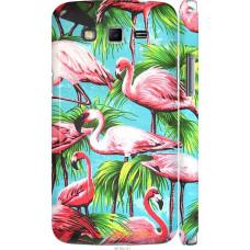 Чехол на Samsung Galaxy Grand 2 G7102 Tropical background