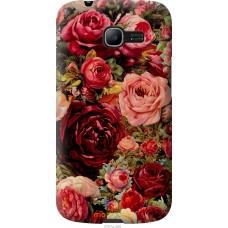 Чехол на Samsung Galaxy Star Plus S7262 Прекрасные розы