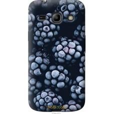 Чехол на Samsung Galaxy Core Plus G3500 Морозная ежевика