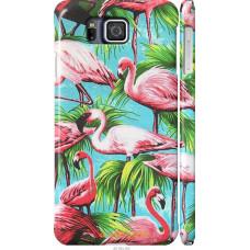 Чехол на Samsung Galaxy Alpha G850F Tropical background