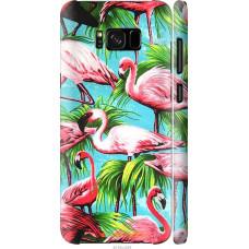 Чехол на Samsung Galaxy S8 Tropical background
