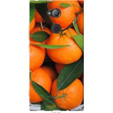 Чехол на Sony Xperia XA2 Ultra H4213 Мандарины
