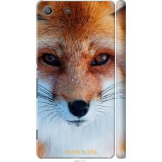 Чехол на Sony Xperia M5 Рыжая лисица