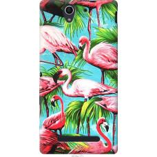 Чехол на Sony Xperia C3 Tropical background