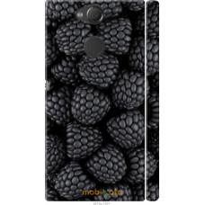 Чехол на Sony Xperia XA2 Черная ежевика