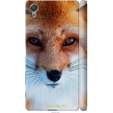 Чехол на Sony Xperia X Рыжая лисица