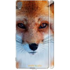 Чехол на Sony Xperia XA Рыжая лисица