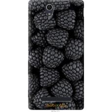 Чехол на Sony Xperia C3 Черная ежевика
