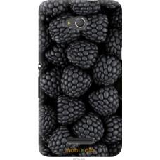 Чехол на Sony Xperia E4g Черная ежевика