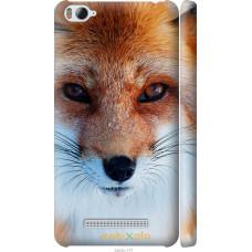 Чехол на Xiaomi Mi4c Рыжая лисица