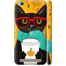 Чехол на Xiaomi Redmi 5A Осенний кот
