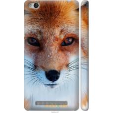 Чехол на Xiaomi Redmi 3 Рыжая лисица