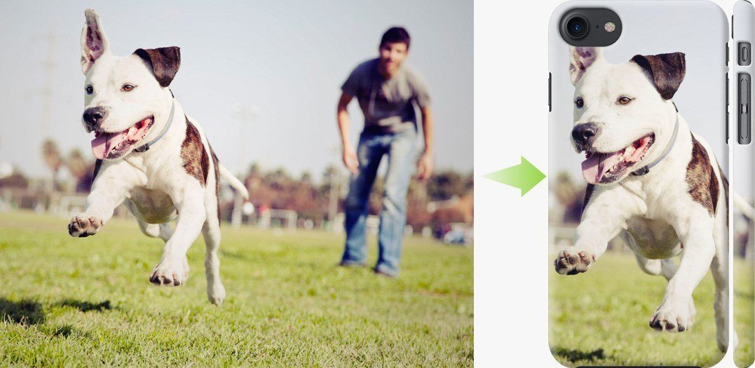 Чехол на айфон - свой дизайн собака